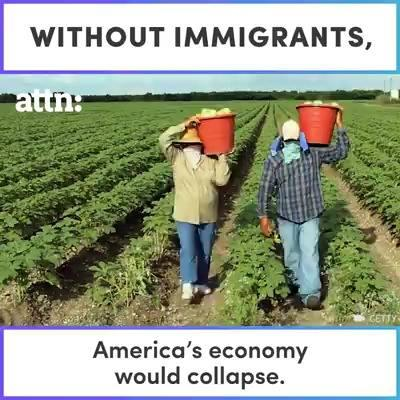 impacts_of_immigration_on_us_economy